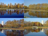 Set Of City Park In Gold Fall