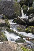 Landscape Of Becky Falls Waterfall In Dartmoor National Park England