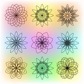 Set Of Nine Contour Flowers On Colorful Background