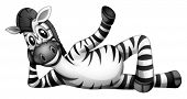 Illustration of a zebra resting on a white background