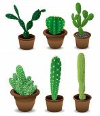 picture of cactus  - Cactus set - JPG