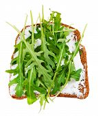Sandwich From Bread, Spread And Fresh Arugula