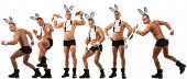 Lovely men in rabbit costume with carrots
