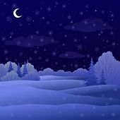 Landscape, night winter forest