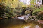 Autumn at Falling Foss in North Yorkshire