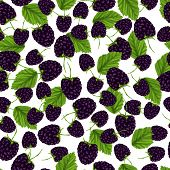 Blackberry pattern