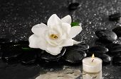 White gardenia and candle on pebbles �¢�?�?wet background