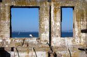 Alcatraz Bird In Frame