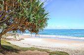 Watergoes Beach In Byron Bay In Australia