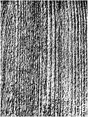 vector rough wood texture