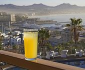 Glass Of Pineapple Juice With Palms And Marina View In Background