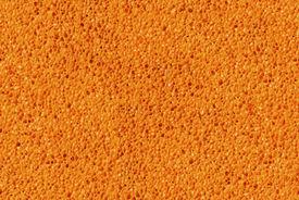 image of baste  - Sponge - JPG