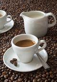 Espresso & coffee beans