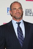 LOS ANGELES - OCT 21:  Chris Meloni at the