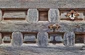 Castillan Style Door