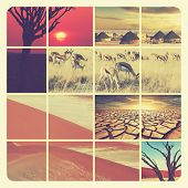 african landscapes collage