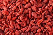 Goji berries as background