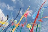 Artistic Kites, Flags, Strips Fluttering In The Sky