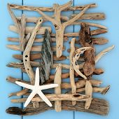 Starfish shell and driftwood abstract on a wooden blue background.