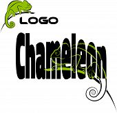 image of chameleon  - The word with the image of a chameleon - JPG