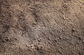 stock photo of humus  - Peat Turf Macro Closeup large detailed brown organic humus soil - JPG