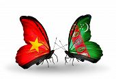 picture of turkmenistan  - Two butterflies with flags on wings as symbol of relations Vietnam and Turkmenistan - JPG