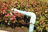 stock photo of underground water  - A water pipes in a garden at the park - JPG