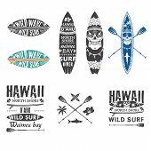 picture of hawaiian flower  - Surfing vector emblem set with hawaiian lei surfboard shark teeth shark skull and paddle - JPG