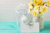 pic of caged  - Fresh yellow daffodils flowers candles in decorative bird cages and empty tag on turquoise painted wooden planks against white wall - JPG