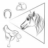 stock photo of horseshoe  - Linear range of the horses head and accessories horseshoe - JPG