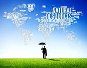 pic of environmental conservation  - Natural Resources Environmental Conservation Sustainability Concept - JPG