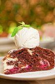 pic of ice-cake  - A slice of chocolate cake with ice cream - JPG