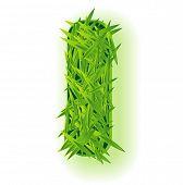 image of alphabet letters  - Vector grass letter - JPG