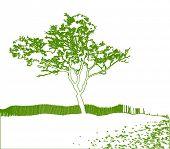 Vector Tree Silhouette Scene