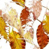 Folhas de outono sem costura arte abstrato Design