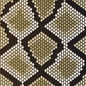Snake skin pattern for design as a background. Jpeg version also available