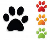 Paw print collectie