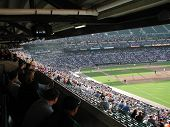 Ballpark View