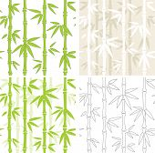 Collection - four seamless vector backgrounds with bamboo