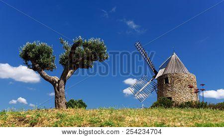 Meadow Grimaud Moulin Saint Roch