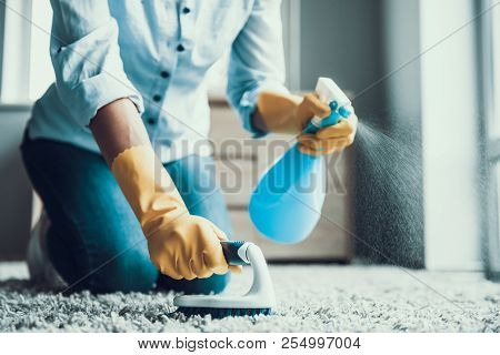 poster of Young Beautiful Woman Cleaning Carpet With Brush. Closeup Of Girl Wearing Protective Gloves Cleaning