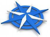 picture of compass rose  - Navigation - JPG