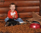 Joy In The Dog Food
