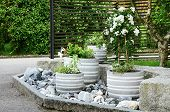 Stone Garden Arrangement At House Entrance With Green And White Plants And Concrete Plant Pots poster