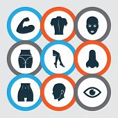 Physique Icons Set With Nose, Arm, Back And Other View Elements. Isolated  Illustration Physique Ico poster