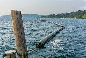 A View Of Pontoons That Create A Divide On Lake Washington Near Renton, Washington. poster