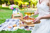 Young Woman Holding A Dish With Glasses White Wine At Picnic Summer Party, Close Up poster