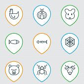 Zoology Icons Set With Seafood, Fish Bone, Deer And Other Grizzly Elements. Isolated Vector Illustra poster