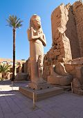 Pharaoh Ramses Ii Enormous Stone Statue