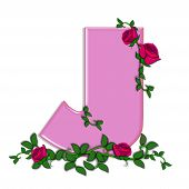 picture of climbing roses  - The letter J in the alphabet set Blushing Roses is soft pink - JPG